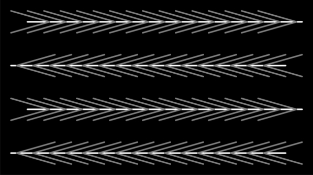 motion–illusion3