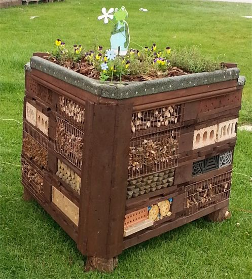 http://sallykimmis.vpweb.co.uk/Harrogate-Autumn-Show-Garden.html